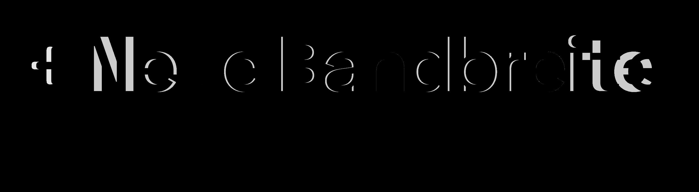 Neue Bandbreite logo